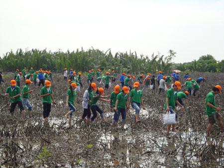 Đại diện các doanh nghiệp, các bạn đoàn viên thanh niên tham gia trồng rừng. Ảnh: Q.H